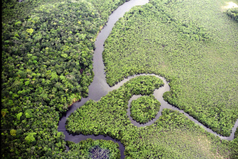 El programa Áreas Protegidas de la Amazonía está actualmente en su tercera fase. Foto: ARPA Brasil.