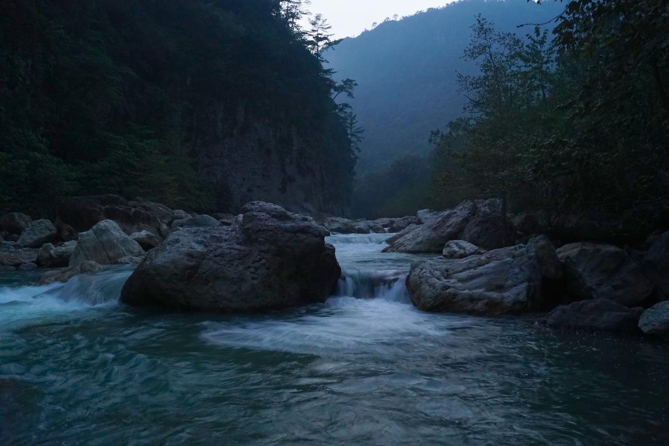 A la orilla del río Apulco se forman pozas donde los sapos se reproducen una vez al año. Foto: Alfredo Hernández.