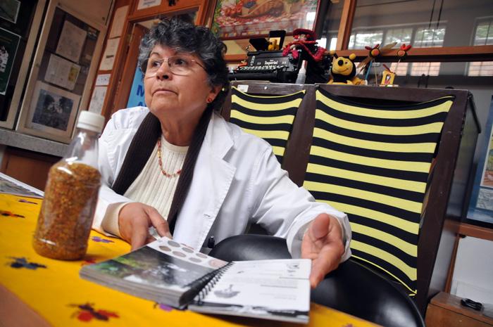 En 2016 Guiomar Nates Parra publicó la Iniciativa Colombiana de Polinizadores, capítulo abejas. Foto: Agencia de Noticias Universidad Nacional.