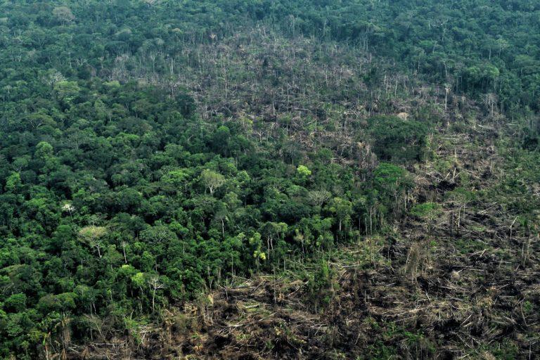 Sobrevuelo en el Parque Nacional Chiribiquete. Foto: Fundación para la Conservación y el Desarrollo Sostenible (FCDS).