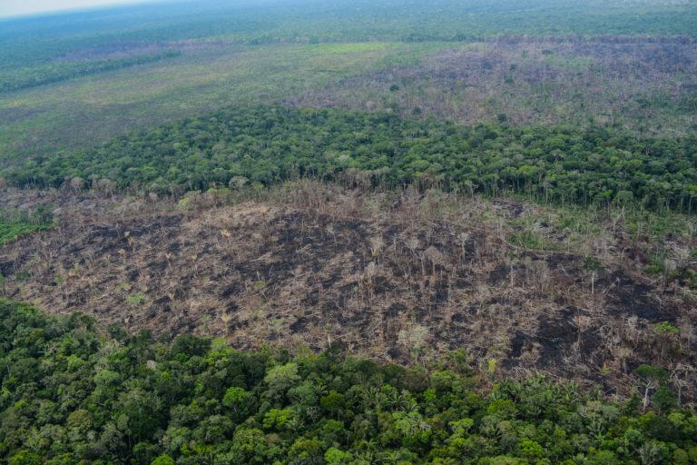 Cuadro A1. Sobrevuelo en el Parque Nacional Chiribiquete. Foto: Fundación para la Conservación y el Desarrollo Sostenible (FCDS).