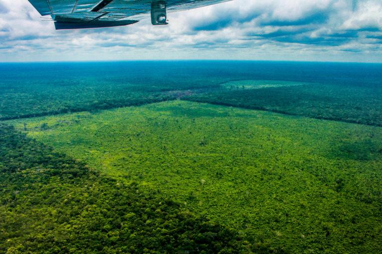 Cuadro A2. Sobrevuelo en el Parque Nacional Chiribiquete. Foto: Fundación para la Conservación y el Desarrollo Sostenible (FCDS).