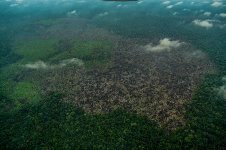 Cuadro B2. Sobrevuelo en el Parque Nacional Chiribiquete. Foto: Fundación para la Conservación y el Desarrollo Sostenible (FCDS).