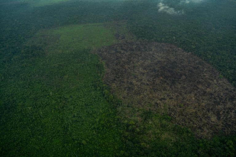 Cuadro B3. Sobrevuelo en el Parque Nacional Chiribiquete. Foto: Fundación para la Conservación y el Desarrollo Sostenible (FCDS).
