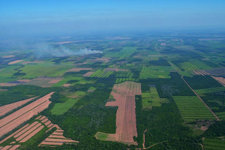 El cambio de uso de suelos es una de las principales amenazas para la Amazonía en Bolivia. Foto: Fundación Amigos de la Naturaleza.