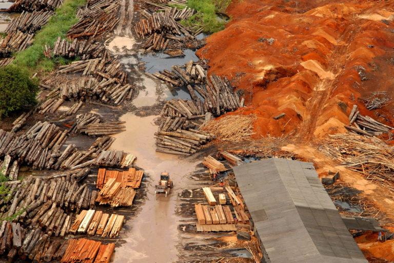 Una de las madereras más grandes instaladas en el municipio de Tailandia, en Pará. Foto: Paulo Santos /Interfoto/ Instituto Socioambiental.