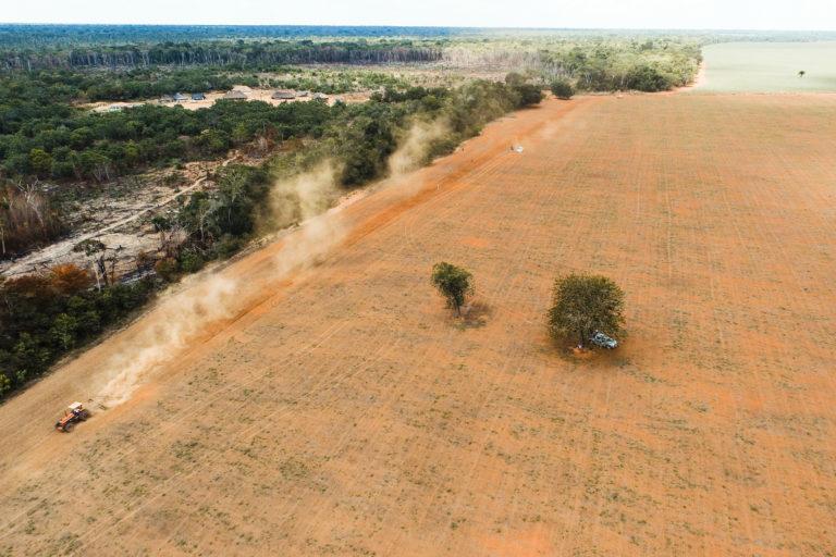 Deforestación bosques primarios Pérdida de bosque en territorio indígena en Brasil. Foto: Instituto Socioambiental (ISA).
