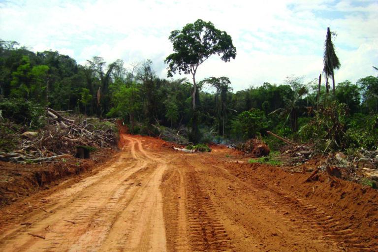 La región con mayor desarrollo vial es Santa Cruz con más de 34000 kilómetros de vías. Foto: Marlene Quintanilla / Fundación Amigos de la Naturaleza.