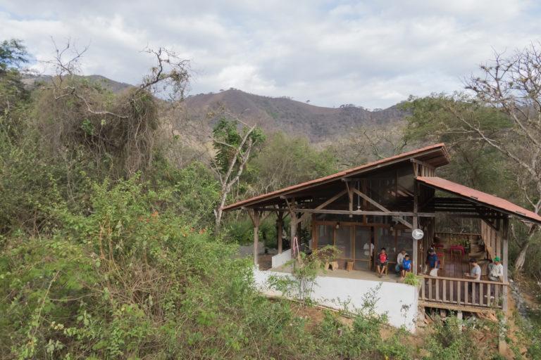 El proyecto de restauración en la Reserva Jorupe se cimenta en un banco de semillas que ha permitido diversificar la siembra de especies de árbol en el lugar. Foto: Fundación Jocotoco.