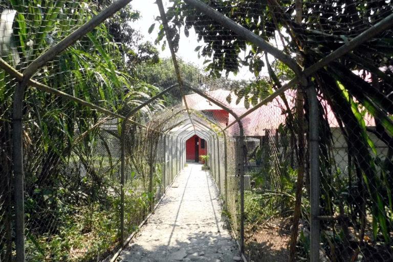 En Senda Verde se han construido corredores para el tránsito de las personas. Foto: Senda Verde.
