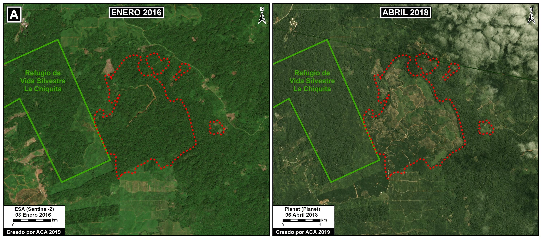 Zoom A muestra la deforestación de 380 hectáreas justo al norte de una plantación de palma aceitera. Datos: Planet, ESA, MAAP.