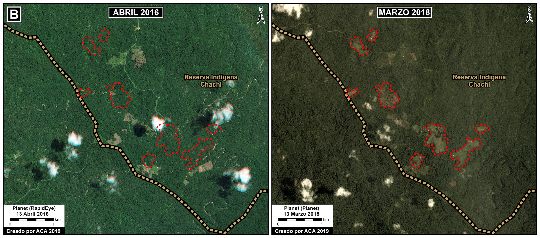 Zoom B muestra la deforestación de 50 hectáreas al interior de la Reserva Indígena Chachi. Datos: Planet, MAAP.