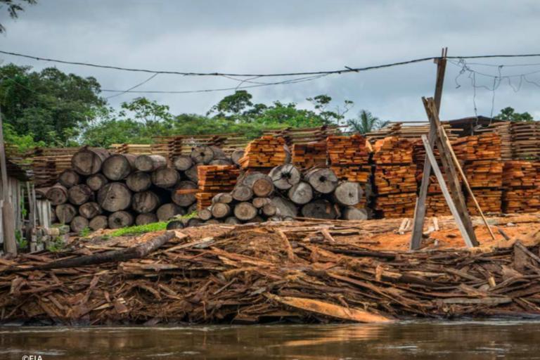 Uno de los principales problemas ambientales de la región Loreto es el tráfico y el lavado de madera. Foto: EIA.