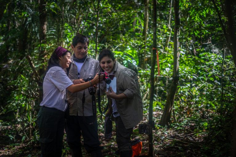 Investigadores revisan las fotos y videos captadas por las cámaras trampa. Foto: Diego Pérez / WWF Perú.