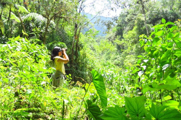 Jessica Pisconte en sus recorridos en busca de aves para sus investigaciones. Foto: Archivo personal.