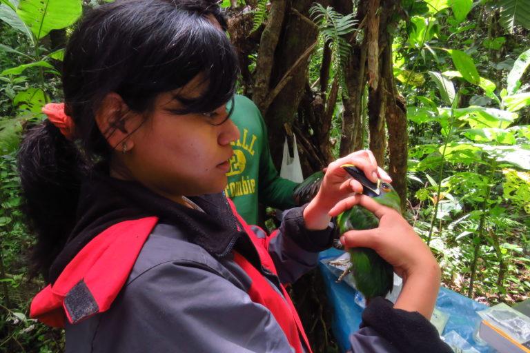 La bióloga y guardaparque Jessica Pisconte se ha dedicado a la investigación de las aves. Foto: Archivo personal.