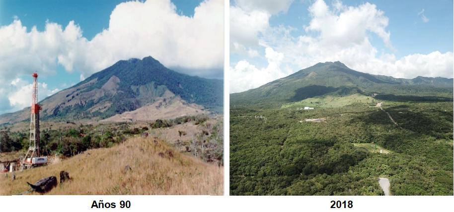 Bosque en campo geotérmico. Comparativo entre la zona restaurada en los años 90 y el bosque recuperado en 2018. Foto: ICE.
