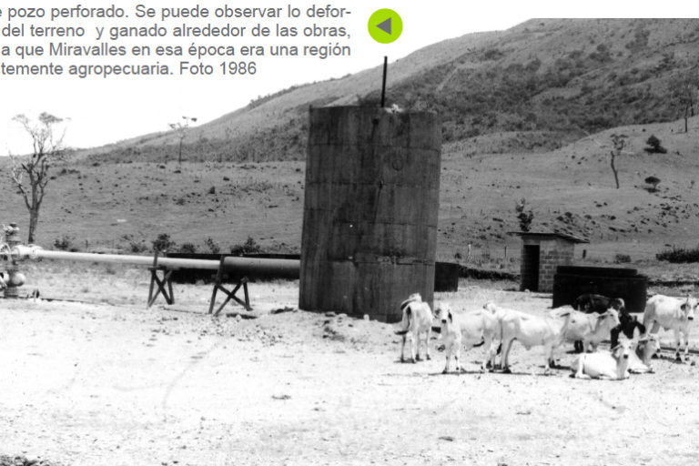 Bosque en campo geotérmico. La ganadería degradó la zona donde hoy se recupera un bosque secundario de cerca de 1000 hectáreas. Foto: ICE.