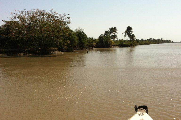 Peces de agua dulce en Colombia. El río Magdalena tiene una longitud de más de 1500 kilómetros. Foto: TMbux.