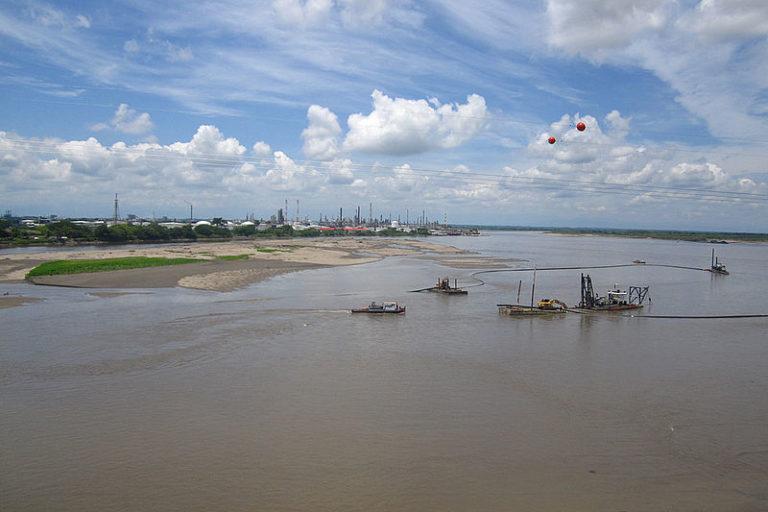 Peces de agua dulce en Colombia. Río Magdalena. Foto: Nadya Chaves - Universidad Nacional.