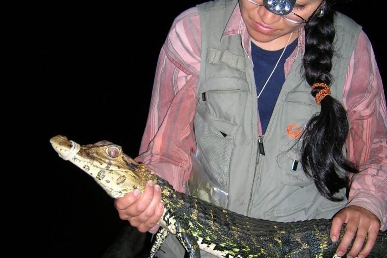 La bióloga Ninon Ríos asegura que no debemos temer a los caimanes. Foto: Ninon Ríos.