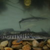 Conservación Magdalena Medio. El bagre rayado del Magdalena vive sus primeros tres años en las ciénagas y luego migra al río. Foto: Mauricio 'El Pato' Salcedo – WCS Colombia.