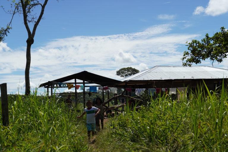 Indígenas guayaberos Meta. Vivienda Jiw en el resguardo Caño La Sal. Foto: María Fernanda Lizcano.