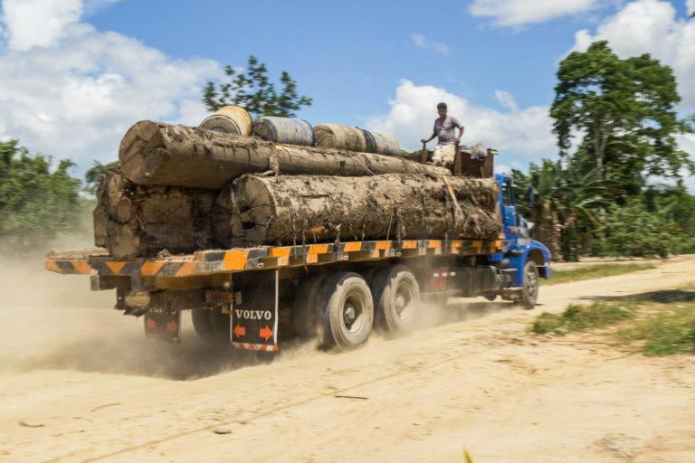 Desafíos 2020 Perú La trazabilidad de la madera es una tarea pendiente en Perú. Foto: EIA.