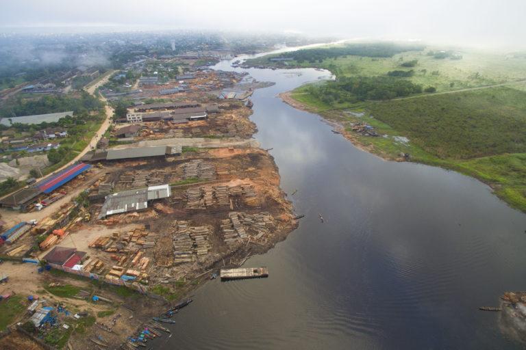 Más de 160 mil hectáreas de bosques primarios se perdieron en Perú durante 2019. Foto: EIA