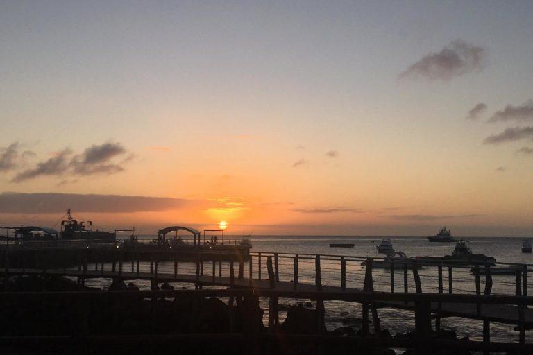 Conservación del petrel de galápagos. Puerto marítimo. Foto: Belén García - Fundación Jocotoco.
