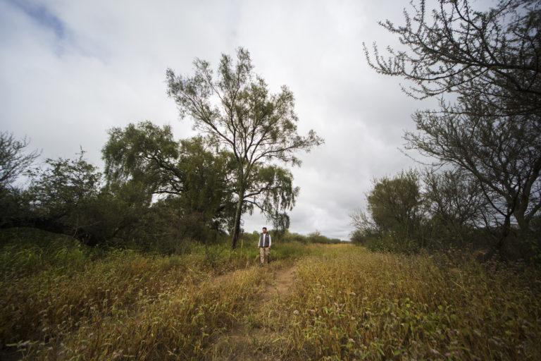 Un hombre camina por una picada, sendero de tierra abierto en medio de los pajonales y árboles de baja altura que conforman el paisaje más común del bosque seco. Foto: Fundación Vida Silvestre – @YawarFilms
