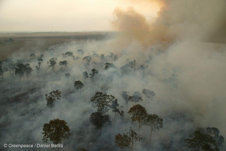 incendios brasil amazonía