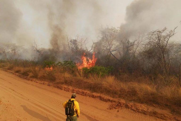 incendios chiquitania bolivia El fuego arrasó con un extenso territorio del bosque seco de Roboré, en Bolivia. Foto: Jerson Bravo, bombero voluntario.