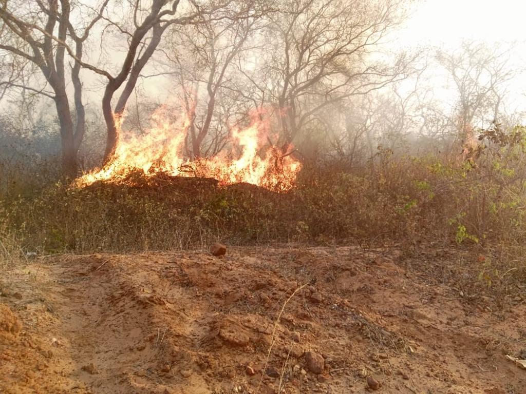 incendios chiquitania bolivia