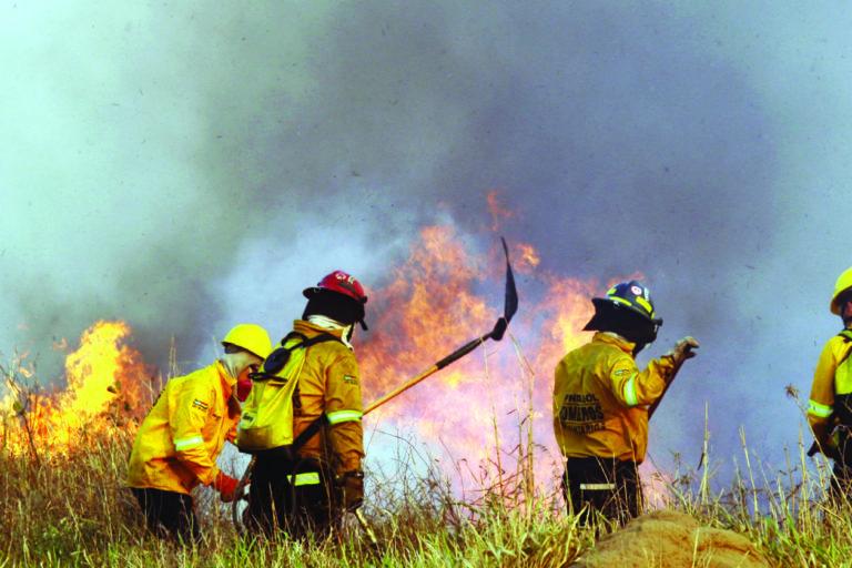 INCENDIOS BOLIVIA CHIQUITANIA Bomberos luchan contra el fuego en la región de la Chiquitanía, en Bolivia. Foto: APG.