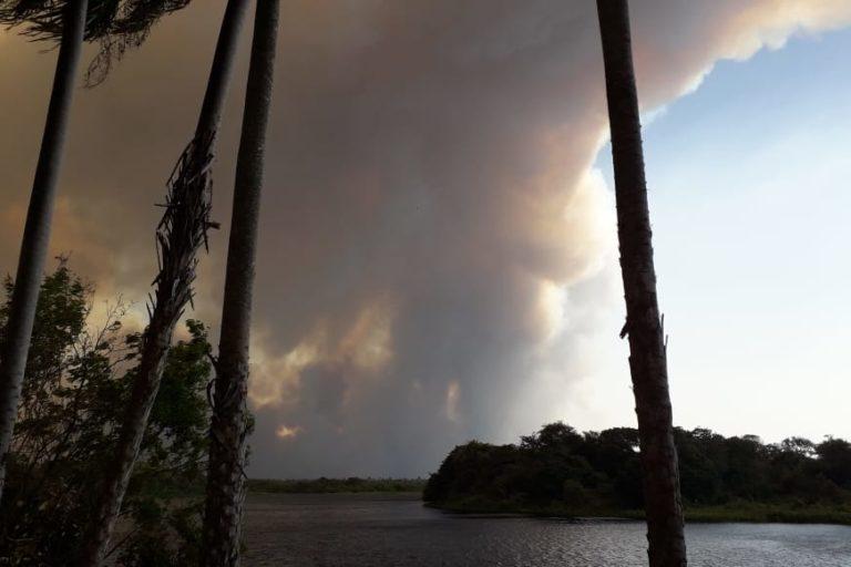 El incendio afecta el 70% de las 15 000 hectáreas de la reserva biológica Tres Gigantes, una de las pocas dedicadas a la conservación de la biodiversidad en Paraguay. Foto: Guyrá Paraguay