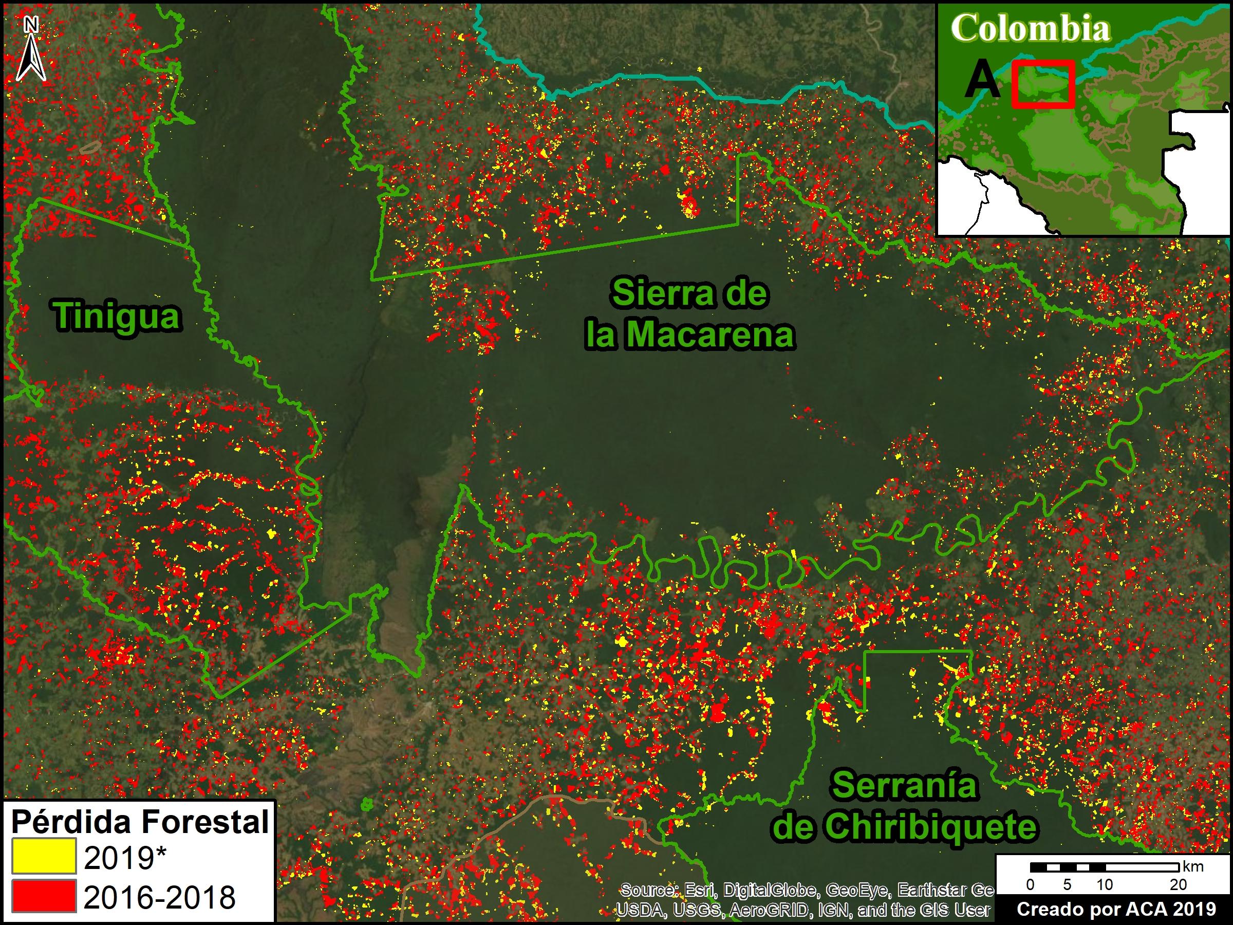 Deforestación parque Tinigua. Zoom A. Deforestación en los Parques Nacionales Tinigua, Serranía de Chiribiquete, y Sierra de la Macarena, *hasta 25 de julio. Datos: UMD/GLAD, Hansen/UMD/Google/USGS/NASA, RUNAP, RAISG