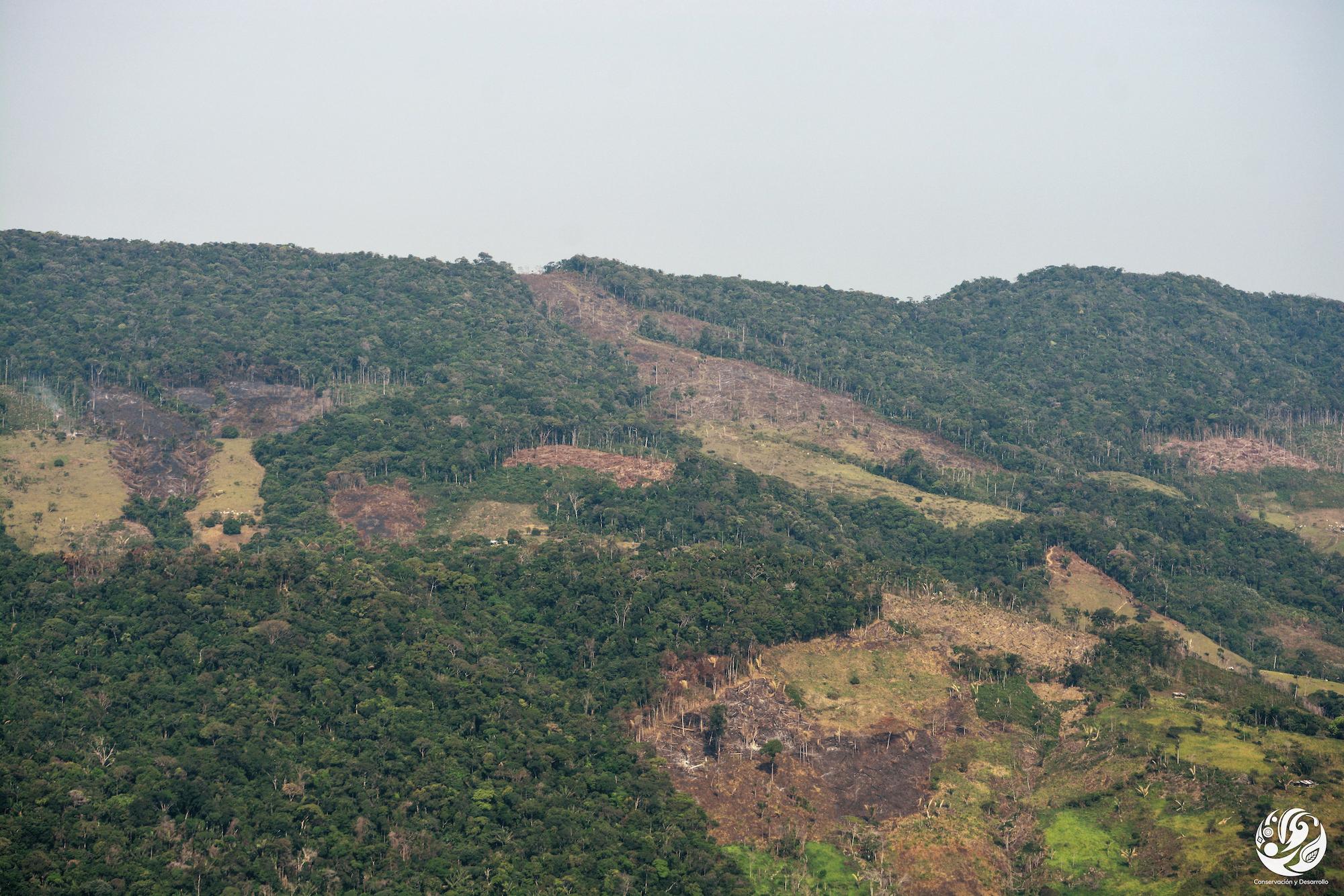 Deforestación parque Tinigua. Deforestación Amazonía norte colombiana. Foto: Fundación para la Conservación y el Desarrollo Sostenible (FCDS).