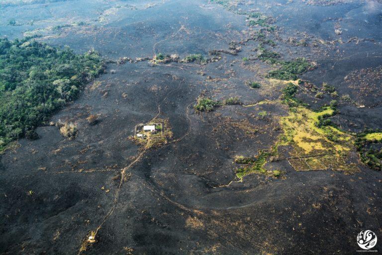 Deforestación parque Tinigua. Así se ve la Amazonía colombiana luego de que se le prende fuego a lo deforestado. Foto: Fundación para la Conservación y el Desarrollo Sostenible (FCDS).