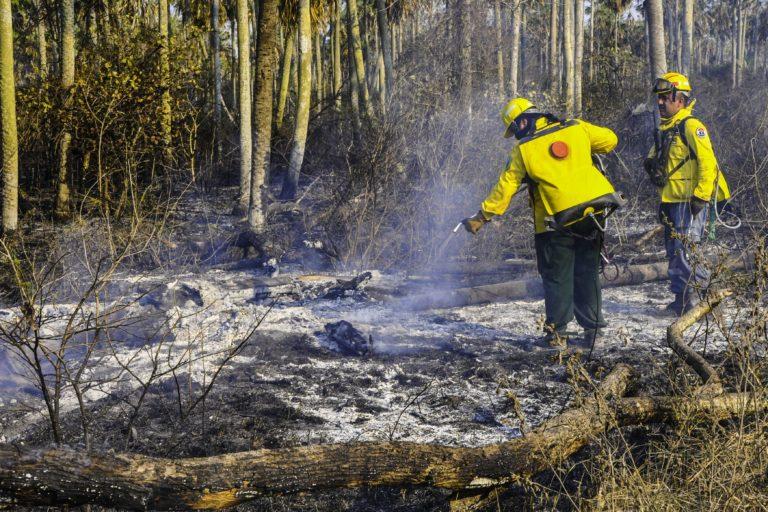 Bomberos paraguayos trabajan para terminar con los incendios forestales. Foto: Secretaría de Emergencia Nacional (SEN)