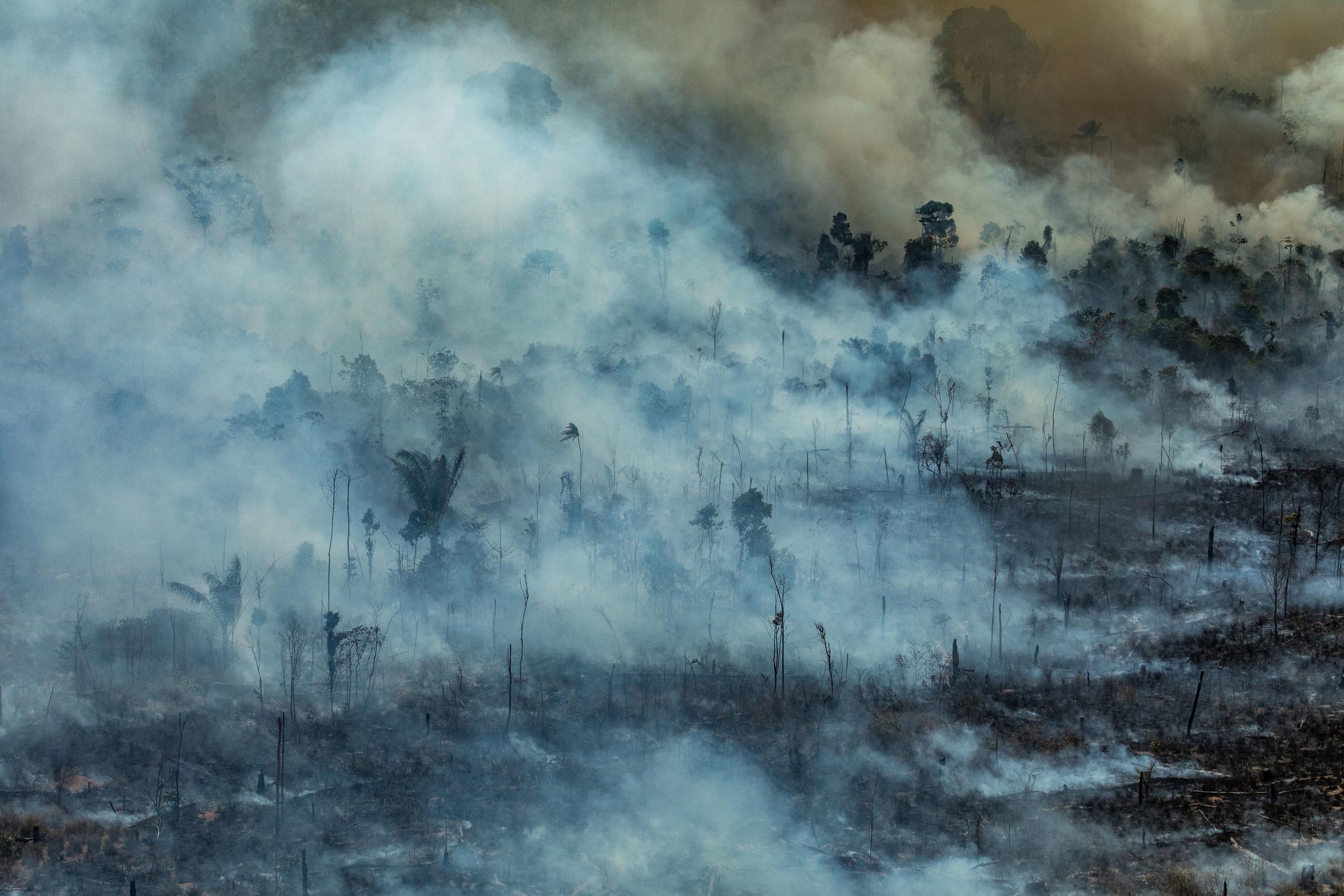 Incendios en la Amazonía. Novo Progresso, Para, Brasil. Incendio en Jamanxim APA. Foto: Victor Moriyama / Greenpeace.