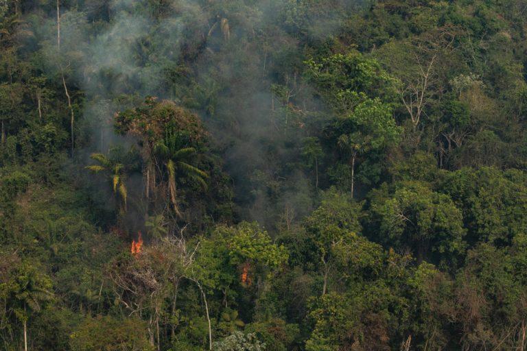 Incendios en la Amazonía. Altamira, Para, Brasil. Incendio en Cerra do Cachimbo REBIO. Foto: Victor Moriyama/Greenpeace.