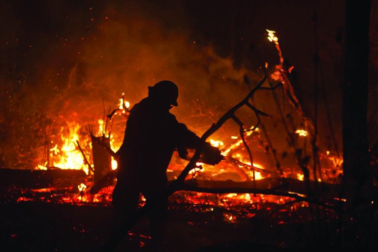 COVID 19 Más de cinco millones de hectáreas fueron devastadas por los incendios forestales de 2019. Foto. Gastón Brito.