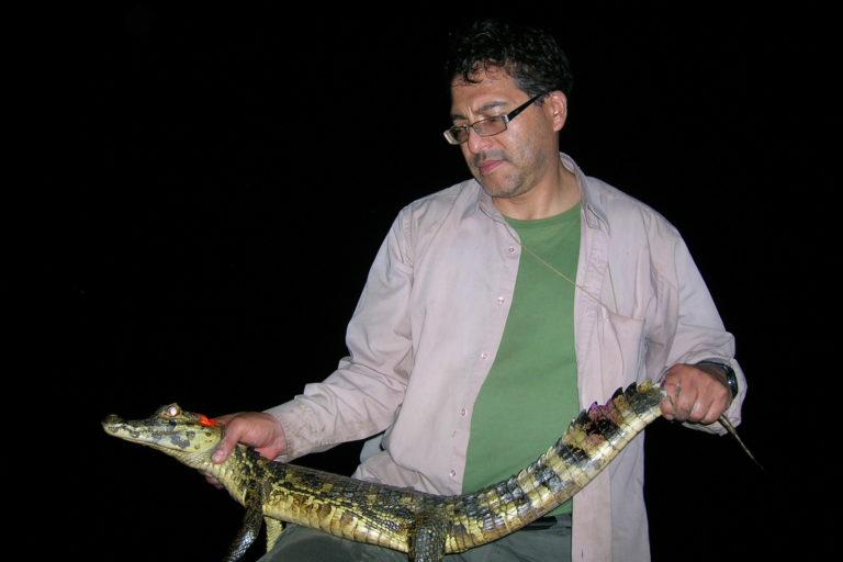 El herpetólogo James Aparicio en el río Beni durante sus viajes de estudios sobre caimanes. Foto: Archivo personal.