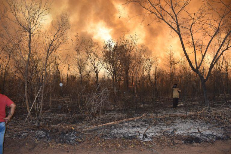 El horizonte es fuego. Las llamas avanzan y alguna cuadrilla de voluntarios observa el tamaño del desastre. Crédito: Juan de Dios Garay H