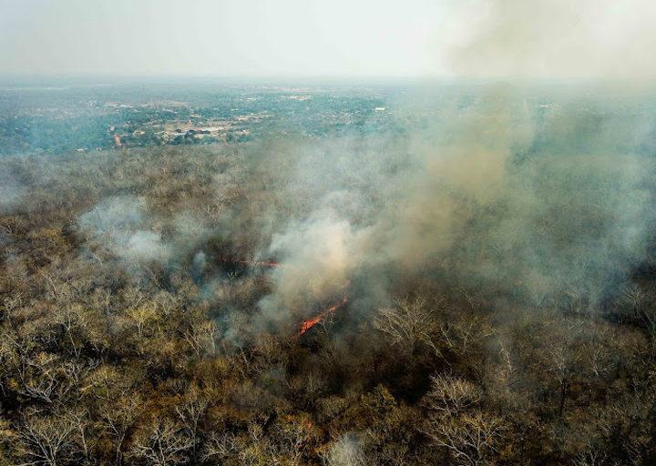 Roberto Vides-Almonacid critica la falta de reacción del gobierno boliviano ante los incendios forestales. Foto: Fundación para la Conservación del Bosque Chiquitano.