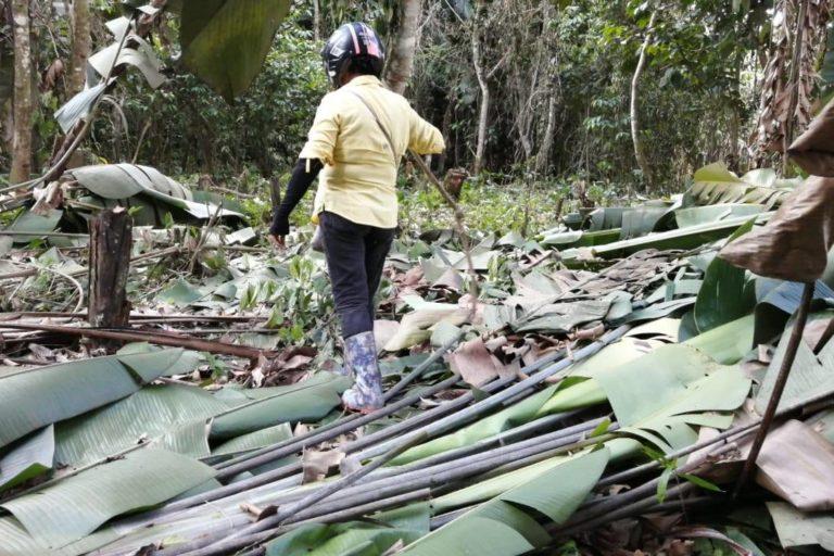 Según datos oficiales, cada año ocurren dos a tres invasiones en los humedales. Foto: Tatiana Álvarez.
