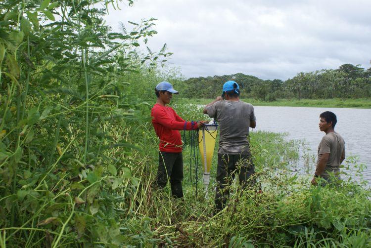 El instituto Sinchi realizó una evaluación de los humedales de la Amazonía en el año 2017. Foto. Nelly Kuiru – Instituto SINCHI.