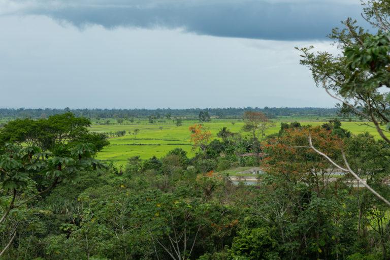 El Bosque de Protección Alto Mayo está muy cerca de la comunidad Shampuyacu. Foto: Conservación Internacional.
