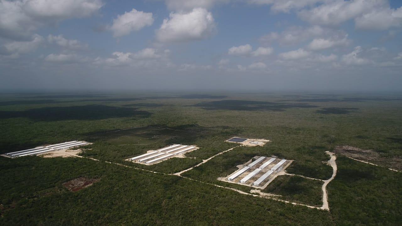 Campeche es el estado mexicano con mayor territorio reservado para la conservación ambiental. Foto: Robin Canul.